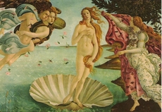 Goddess Venus on her shell, painting from Botticelli